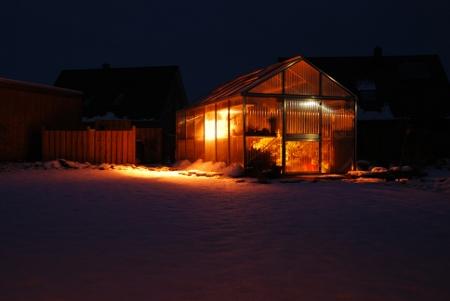 Das Zusatzlicht für meine Winterwachser erhellt auch den verschneiten Garten.